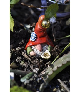The Gnome of the Vase